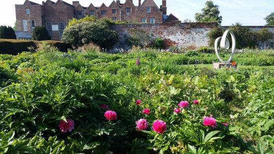 Rose Garden Delights