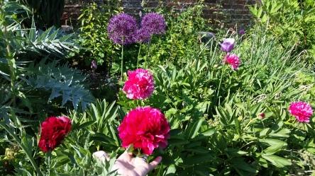 Florals Flourishing